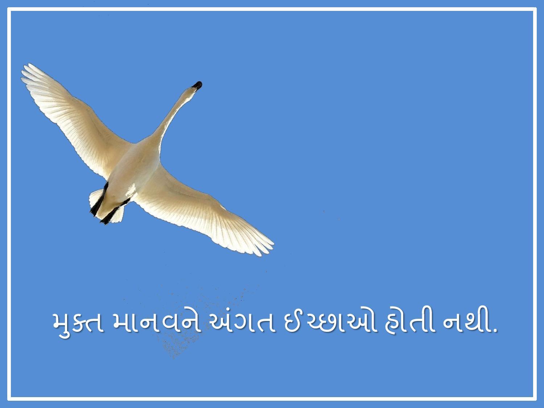 Mukta Manav-page-002