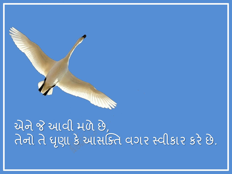 Mukta Manav-page-006
